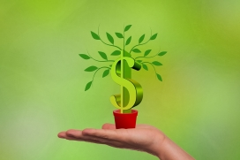 Curs 'Obrir la mirada a l'economia social i sostenible'