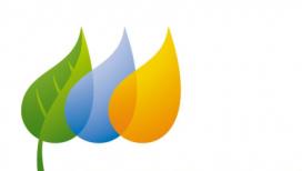 Programa social de la Fundació Iberdrola 2019
