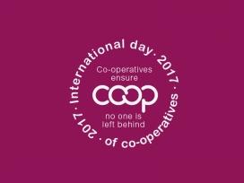 Logo del Dia Internacional de les Cooperatives 2017