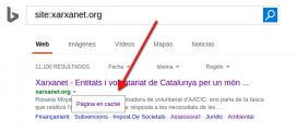 A Bing també podreu saber quin ha estat l'últim dia que s'ha indexat la pàgina.