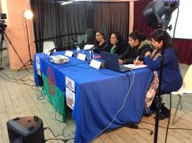 Jelen Amador, al fons, en una de les trobades de la Drom