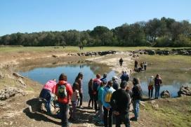 La surgència d'aigua i l'eclosió dels ous de triops atreu a la natura gran nombre de visitants, que han de tenir un comportament respectuós (imatge: limnos.org)