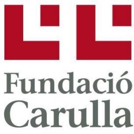 Logo de la Fundació. Font: Fundació Carulla