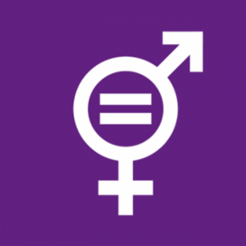 Curs 'Transversalitzant el Gènere. Projectes, organitzacions i pressupostos'. Font: Enginyeria sense Fronteres