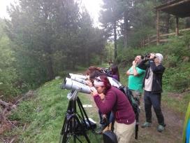 Una activitat de voluntariat ambiental durant la passada Setmana de la Natura a MónNatura Pirineus (imatge: monnaturapirineus.com)