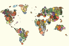 Mapa del món elaborat per Nutrició Sense Fronteres. Font: Nutrició Sense Fronteres