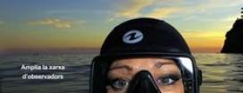 Si t'agrada el mar, pots incorporar-te a la xarxa d'observadors voluntaris Observadors del mar (imatge: observadorsdelmar.cat)