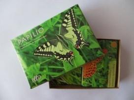 Papilio, un joc de cartes sobre papallones (imatge:plld.cat)