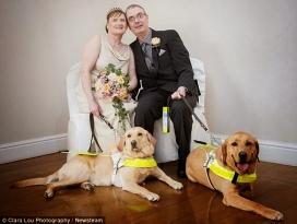 Les persones amb discapacitat visual haurien hagut de presentar un informe mèdic per casar-se si no es modifiqués la Llei. Font: Seamos Más Animales