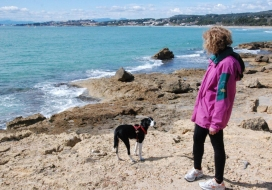 Passejada amb gossos per la platja de Tarragona