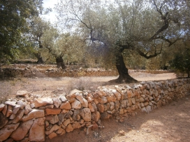 Les construccions en pedra seca són les més antigues elaboracions humanes en el paisatge (imatge: flickr.com/diluvi)