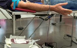 Persona donant sang.