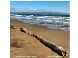 Platja de la Marquesa, a Deltebre (imatge: @eulaliaguarro)