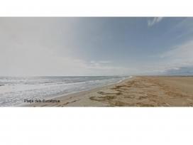 Platja dels Eucaliptus, a Amposta (imatge: Google Maps)