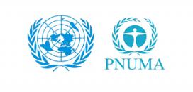 Programa de les Nacions Unides pel Medi Ambient (PNUMA). Font: Wikimedia
