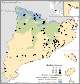 Poblacions de papallones estudiades al CBMS (imatge:catalanbms.org)