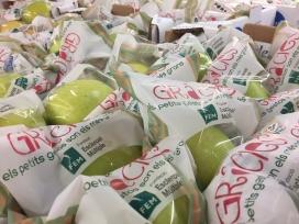 """Campanya """"Una poma per la vida"""" Font: Fundació Esclerosi Múltiple"""