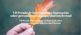 VII Premi d'investigació i d'innovació sobre persones amb discapacitat intel·lectual. Font: Plana web d'Ampans
