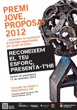 Cartell del Premis Jove, proposa! 2012