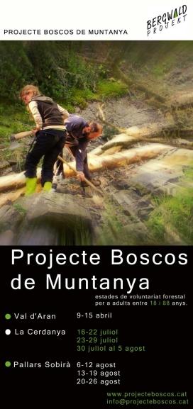 Cartell Projecte Boscos de Muntanya