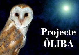 Un exemple de col·laboració empresa-entitat és el Projecte Òliba, que es desenvolupa al Parc Natural dels Aiguamolls de l'Empordà amb l'entitat Apnae (imatge: apnae.org)