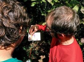 Durant les sessions es realitzaran inspeccions en 5 rius i rieres de Catalunya (imatge:projecterius.cat)
