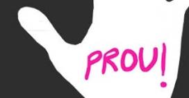 Detall del concurs del cartell de 2013