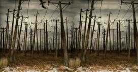 Algunes organitzacions denuncien un atac al consum d'energies renovables.