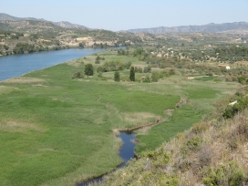 Reserva Natural de Sebes i Meandre de Flix