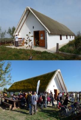 La Reserva de Riet Vell al Delta de l'Ebre és una finca agroecològica de Seo Bird Life (imatge: seo.org)