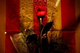 Rosa de Sant Jordi Font: flickr.com