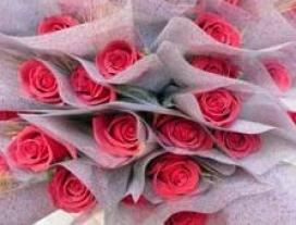 Roses sostenibles. Font: www.ajsosteniblebcn.cat