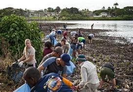 Projecte de voluntariat rural.