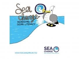 Des de l'oxigen a l'oci, passant pel reservori d'aliment,  el mar aporta molt a la humanitat (imatge: seachnage.eu)