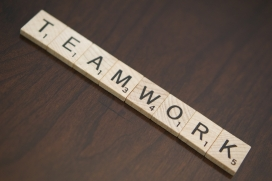 Teamwork. Font: Steve Davis (Flickr)