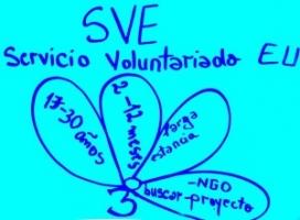 Servei Voluntari Europeu