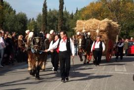 Festa dels Tres Tombs (diverses poblacions, a partir de la 2a quinzena de gener).