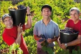 Treballadors de les vinyes d'Urpina