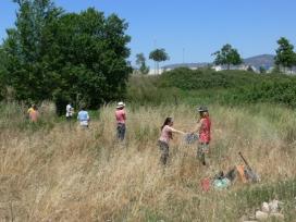 L'objectiu d'aquesta crida és trobar voluntaris i voluntàries per ajudar els plançons més joves a superar la calor i la sequera de l'estiu (imatge: Associació Hàbitats)