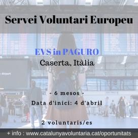 es busquen 2 persones voluntàries a Caserta