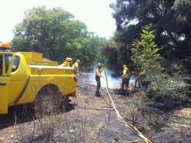 Voluntaris Forestals de Terrassa, visitant les zones cremades de l'Empordà..