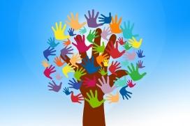 Fundació Esplai organitza aquest curs del 25 de setembre al 29 d'octubre del 2017. Font. Pixabay