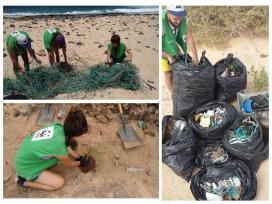 Camp de treball a l'arxipèlag Chinijo, a l'illa de La Graciosa, amb WWF (Imatge: wwf)