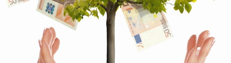 Arbre amb diners. Font: 347 Asesores