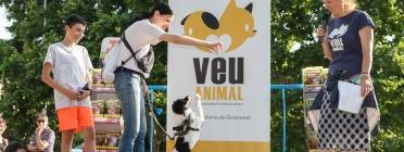 Fira Veu Animal 2019. Font: Veu Animal Font: Veu Animal