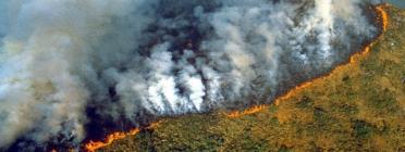 Els incendis ja porten actius des del 6 d'agost. Font: El Desconcierto. Font: Font: El Desconcierto.
