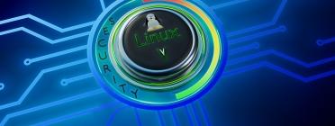 Linux compta amb opcions de seguretat i privacitat avançades. Font: MasterTux (Pixabay)