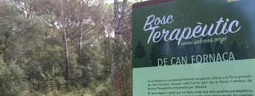 Diverses empreses donen suport a l'Associació Selvans per la conservació de boscos madurs