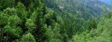 Entitats del sector ambiental alerten riscos sobre el sector a causa de la situació política