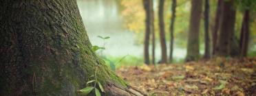 La quarta edició del postgrau Significats i Valors Espirituals de la Natura inicia el 15 de febrer de 2019